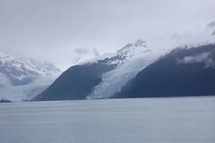 cep-dsc_03931 (honeyGwhiz) Tags: alaska glaciers princewilliamsound fjord floatingice miniicebergs