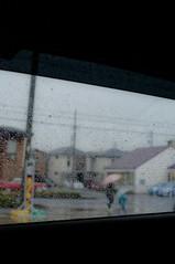rainy day (fl*clover) Tags: rain 35mm bokeh jena flektogon f28 raindrop carlzeiss nikond5000