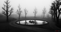 The sorcerer's mirror (bent inge) Tags: park trees bw mist reflection silhouette norway misty stavanger pond outdoor rogaland sorthvitt stjohannes silhuetter bentingeask