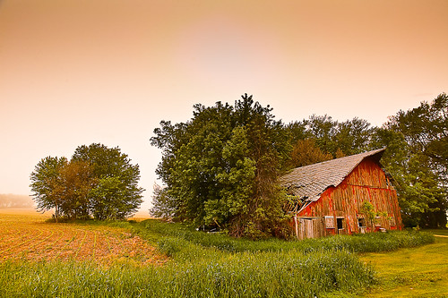 Abandoned Barns Defend Abandoned Men / Loren Zemlicka