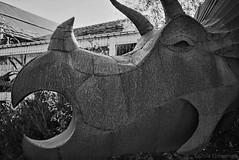 Triceratops - Minolta Freedom Escort - XP2 (divewizard) Tags: california blackandwhite bw sculpture white black blancoynegro film blanco analog freedom blackwhite highwayone californiaone analógica noir dinosaur minolta noiretblanc negro highway1 xp2 ilfordxp2 blanc ilford escort triceratops california1 statute gualala pacificcoasthighway película c41 mendocinocounty chromogenic shorelinehighway schwarzundweiss blackwhitephotos minoltafreedomescort chrisgrossman freedomescort fromexmarinadelrey minoltarivamini rivamini