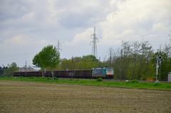 Treno Merci - NordCargo E 483.008 (G@bry1970) Tags: merci bombardier traxx dgt e483 nordcargo f140dc