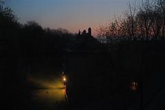 Fox with sunrise (jayzeapix) Tags: vienna wien sunrise fox sonnenaufgang fuchs
