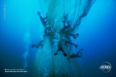 Ocean - Palawan Sea, Philippines (EdenChannel) Tags: ocean sea nature tv fishing wildlife philippines deep documentary naturalhistory eden palawan humanplanet humanplanetoneden edenchannel edentv