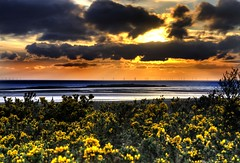 sun sea and wind (Shertila Tony) Tags: sunset england panorama water weather clouds golden town europe day view rooftops cloudy britain scenic vista hdr wirral westkirby gorse merseyside irishsea endoftheday hilbreisland liverpoolbay yahooweather 100commentgroup mygearandme