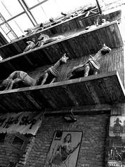 London. Camden Town. Camden Lock. Stables Market - 23bnp (R come Rit@) Tags: city horses blackandwhite bw london camden markets bn shops sculture stores cavalli londra sculptures biancoenero citta negozi stablesmarket ritarestifo