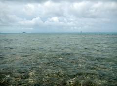 Permit water on the east side of the main shipping channel south of Horseshoe Caye, Belize, May 2012 (Likestofish) Tags: fishing belize flyfishing tarpon mothership saltwater bonefish risingtide flatsfishing