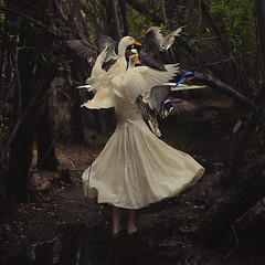 the creation of mother goose (brookeshaden) Tags: trees selfportrait water geese blog duck woods ducks goose swamp behindthescenes nurseryrhyme mothergoose detailshots texturebylesbrumes