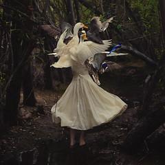the creation of mother goose (brookeshaden) Tags: trees selfportrait water geese blog duck woods ducks goose swamp behindthescenes nurseryrhyme mothergoose detailshots texturebylesbrumes