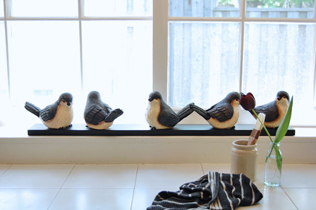 birds-on-sill