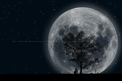 71/365: Love Story - Chapter IV (Rui Almeida.) Tags: flowers wallpaper moon silhouette backlight photoshop contraluz vines shadows herbs background fineart creative fullmoon nightshoot illusion lua romantic moonlight swirls psd lovestory backlighting luacheia photoshopbrush silhoeta againstmoon floralswirl springswirls