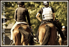 Shooting Racing's Backside (EASY GOER) Tags: park horses ny sports racetrack canon belmont tracks competition racing 7d athletes races equine thoroughbreds equines