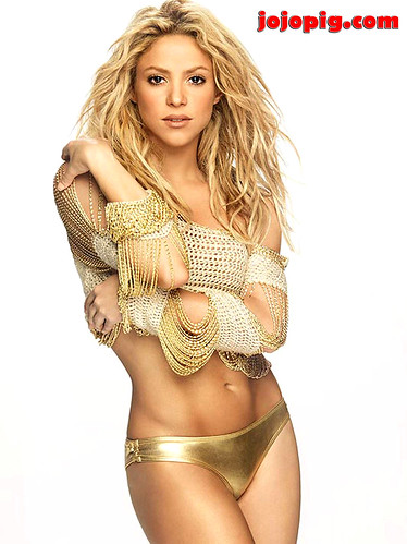 Shakira hot bikini apologise