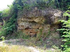 IMG_5376fr (Mangiwau) Tags: indonesia gold mercury air traditional mining rush illegal mineral exploration indonesian emas frenzy alam kantor peti nur alluvial rumbia raksa kendari dulang sultra eksplorasi gubernur pertambangan merkuri colluvial bombana