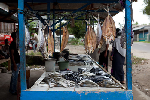 A roadside fish stall in Aceh, Indonesia. Photo by Mike Lusmore/Duckrabbit, 2012.