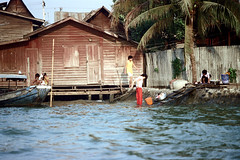 19-064 (ndpa / s. lundeen, archivist) Tags: people woman house color building film home water kids 35mm children thailand boat canal women bangkok nick canals laundry palmtree thai watersedge 1970s 1972 19 1973 klong dewolf washingclothes khlong klongs doinglaundry onstilts nickdewolf photographbynickdewolf khlongs builtonstilts reel19