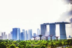 Singapore Marina Bay Skyline (fanjw) Tags: city skyline marina singapore cbd barrage cityskyline singaporeriver marinabay singaporeskyline singaporecbd gardensbythebay marinabaysands singaporemarinabay