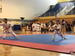 stefanou_15_5_2016_knockdown_163