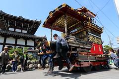 Power (Teruhide Tomori) Tags: people festival japan event  float  gifu ogaki  ogakifestival importantintangiblefolkculturalproperties