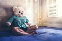 Emotions (Tapa_Flip) Tags: bear sunlight selfportrait photoshop emotion creative surreal teddybear conceptual magical urso selfportrair selfie pelucia creativeselfportrait creativeretouching ursodepelucia