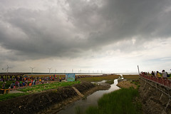 2016-06-10 15.34.28 (pang yu liu) Tags: travel wet land taichung 06 jun   2016   gaumei