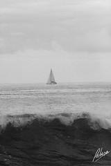 7533212130_23617cd62a_o (Patricia Araya Monsalve) Tags: byn puerto valparaiso mar surf pareja peces playa aves arena nadar pesca olas gaviotas espera pescadores vuelo velero viadelmar maritimo caleta pausa navegacion blacoynegro