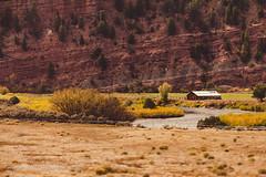 Barn in the Field Near the Banks of the Colorado River Seen from Amtrak's California Zephyr (ppoggio2) Tags: usa colorado trains transportation coloradoriver northamerica locations amtrakcaliforniazephyr 2015100103martinezcachicagoil