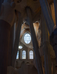 La Sagrada Familia (JJ Photog) Tags: world barcelona family roof building heritage church window glass familia architecture site spain support catholic cathedral roman basilica religion indoor ceiling christian holy gaudi manmade christianity pillars minor sagrada antoni expiatory