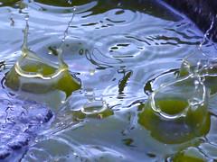 Ker Ploooooooop (Alan FEO2) Tags: water outdoors birdbath panasonic g1 ripples splash dmc hailstones 2oef