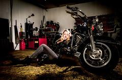 (vipmig) Tags: photoshoot garage harleydavidson motorcycle harleygirl