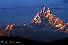 Machapuchare (Adriano.es) Tags: nepal atardecer asia himalaya machapuchare anapurnna