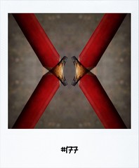 """#DailyPolaroid of 24-3-12 #177 • <a style=""""font-size:0.8em;"""" href=""""http://www.flickr.com/photos/47939785@N05/6877459052/"""" target=""""_blank"""">View on Flickr</a>"""