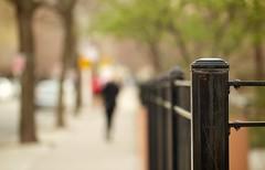 Carry Me Home (Philocycler) Tags: fence bokeh carrymehome blackfence frencefriday bokehfigurebokehtrees