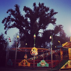 circo #1 (carpe shot) Tags: sunset tree mystery lights tramonto circo circus magic atmosphere fantasy luci albero atmosfera lampioni