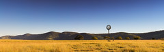 Afternoon Delight (Matthew Post) Tags: autumn winter panorama windmill landscape matthew australia queensland westernqueensland gympie driedgrass goldengrass widgee matthewpost