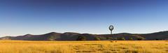 Afternoon Delight (Matthew Post) Tags: autumn winter panorama windmill landscape matthew australia queensland westernqueensland gympie driedgrass goldengrass widgee matthewpost