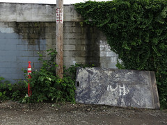 Still Life, Tacoma (Blinking Charlie) Tags: usa landscape ivy tacoma washingtonstate powerpole blackberries 2012 tiretracks trafficbarrier cinderblockwall canonpowershots100 metalplates domedistrict blinkingcharlie