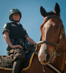 PPPD Officers (Lil Wally) Tags: horse woman smile lady female feminine police cop policewoman fla equine policeofficer mountedpatrol lawenforcementofficer pppdp pinellasparkpolicedepartment