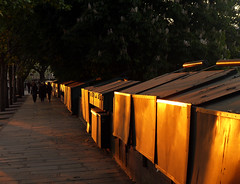 Quai de Conti, le soir, Paris, 16 mai 2012 (Stphane Bily) Tags: sunset sun paris reflection gold soleil or reflet trottoir bouquinistes marronnier quaideconti stphanebily ordusoirquitombe