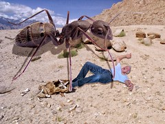 THEM! (brooksbos) Tags: selfportrait macro ga photography photo ant ants horror spoof brooks graphicarts themacrogroup brooksbos
