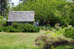 2012-05-26 05-28 Mendocino County 072 Fort Bragg, Mendocino Coast Botanical Gardens