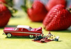 This looks like a berry nice place to have picnic... (Canadian Wendy 24) Tags: picnic littlepeople thebeatles strawberryfieldsforever macromonday musicmonday 365canada soundtrackmonday thesongsoththebeatles