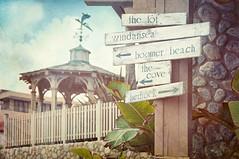 Happy Fence Friday {Which Way Do I Go} Edition! (pixelmama) Tags: california texture sandiego gazebo signage weathered tgif lajollacove hff eightdaysaweek whichwaydoigo goinwest whaleweathervane fencefriday pixelmama hospitalreef whaleviewpointcottage