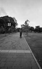 America-yama Park (Snap Shooter jp) Tags: park street leica blackandwhite bw film monochrome japan snapshot stock earlymorning rangefinder snap yokohama m4 blackdiamond xtol trix400 voigtlanderheliar15mmf45 flickrestrellas americayama mygearandme