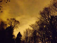 Gold Sky (Our Haunted Scotland Project) Tags: trees our cemetery graveyard project scotland glasgow haunted east gravestone cathcart cathcartcemetery renfreshire hauntedscotland