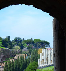 Colosseum 85 (pjpink) Tags: italy rome architecture march spring ancient colosseum 2014 ancientrome pjpink