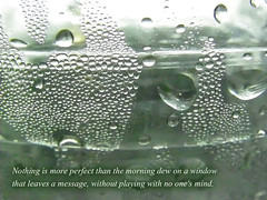 Morning dew (Clouvux) Tags: window nature words poem message text morningdew quotation
