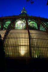 Laken (DST_4405) (huaphotography) Tags: brussels plant belgium belgi greenhouse brussel  laken serre