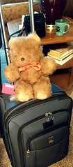 HTBT!  TAKE ME WITH YOU! (Visual Images1) Tags: bear happy teddy tuesday htbt