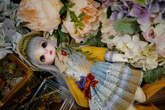 (Murasaki``) Tags: holiday momo bjd rl rosenlied